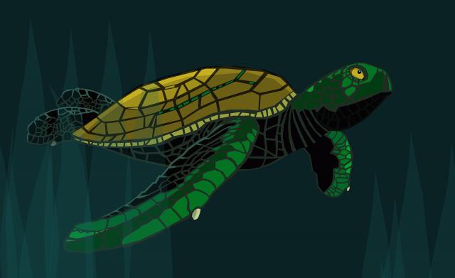 Free Work Sea Turtle