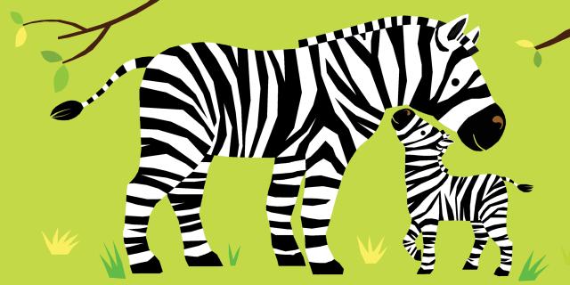 Prentenboek Waar is mijn jasje? Jungledieren | Clavis Publishing