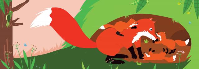 Picture Book Do You See My Tail? / Prentenboek Zie je mijn staart? | Clavis Publishing