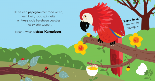 Picture Book Hide and Seek, Little Chameleon / Prentenboek Kiekeboe, kleine Kameleon | Clavis