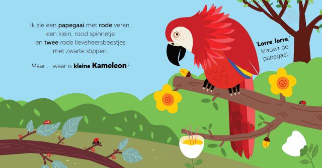 Picture Book Hide and Seek, Little Chameleon / Prentenboek Kiekeboe, kleine Kameleon | Clavis